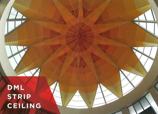 DML-Strip-Ceiling.jpg